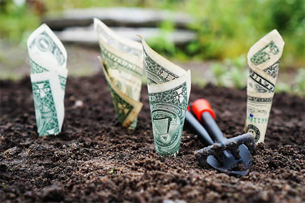 Money-Savings-Habits-planting-cash in the ground