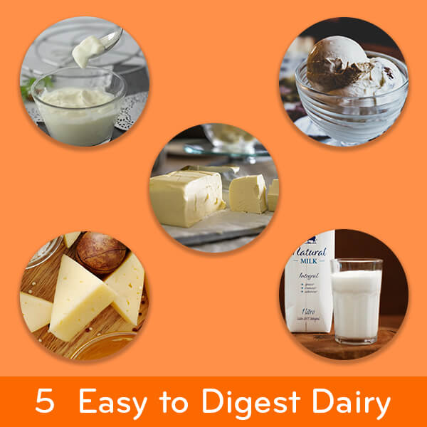 Easy to digest foods: 5 dairy products good for your stomach