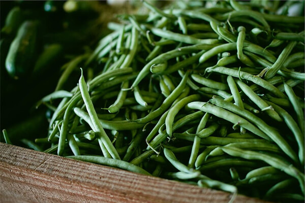 Easy to digestible foods for your stomach: green beans
